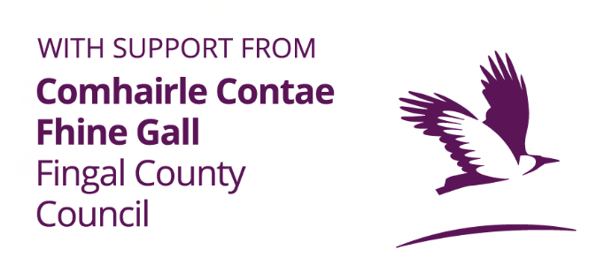 Fingal County Council website